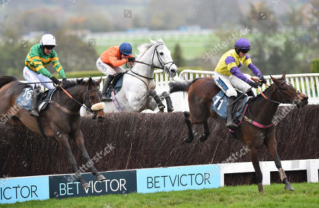 (R) Happy Diva (Richard Patrick) takes the last before going on to win The BetVictor Gold Cup Handicap Steeple Chase from (L) Brelan Das (Barry Geraghty).