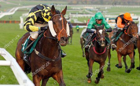 Editorial image of Horse Racing - 16 Nov 2019