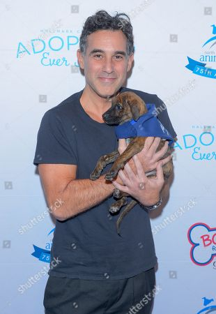 Stock Image of Joshua Radin attends the North Shore Animal League, America's Annual Get Your Rescue On Gala at Pier Sixty New York City