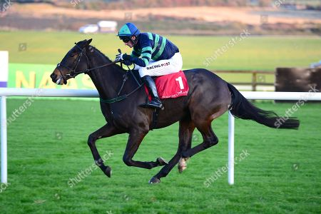 PUNCHESTOWN. DEWCUP and Patrick Mullins winning for trainer TED WALSH.