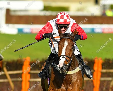 Winner of The Sky Sports Racing On Sky 415 Novices' Hurdle Go Whatever ridden by Tom Cannon and trained by Chris Gordon  during Horse Racing at Plumpton Racecourse on 18th November 2019