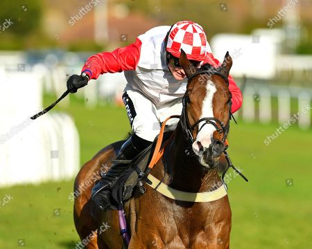 Stock Image of Winner of The Sky Sports Racing On Sky 415 Novices' Hurdle Go Whatever ridden by Tom Cannon and trained by Chris Gordon  during Horse Racing at Plumpton Racecourse on 18th November 2019