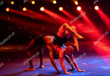 """Stock Image of Artists from Canada perform """"Symbiosis"""" in Zhuhai, Guangdong Province, China, 17 November 2019 (issued 19 November 2019). Zhuhai is a coastal city in Guangdong, Province, China. Also known as a Chinese Riviera just opposite to Macau. Borders Hong Kong to the east and Macau to the west. It is one of China's first Special Economic Zones. The world?s longest sea-crossing bridge, Hong Kong-Zhuhai-Macau bridge has become essential for coordinating innovative developments in cities of the Greater Bay Area. In one year nearly 500 new Macao enterprises were registered in Zhuhai's Hengqin Free Trade Zone. Zhuhai due location and neighboring cities start to attract more visitors with its entertainment business such as China International Circus Festival. China International Circus Festival is considered one of the top venues and the best-paid circus festivals in the world. First time held in 2013 and completed five successful seasons, attracted 45 countries circus playing teams, 134 boutique?s spectacular shows. The Monte-Carlo International Festival, also considered as a world-class festival will present shows in Zhuhai this year.  A total of 24 circus troupes and 200 performers from 22 countries will participate in the 6th China International Festival. Visitors can enjoy watching aerial acrobatics, extreme sports, magic shows and clowns in the Chimelong International Circus City.The design of the Chimelong International Circus City has been inspired by the story of The Lord of The Rings. A large circular LED screen has been embedded in the silver façade of the theater which looks like a diamond ring, adding a variety of modern effects offers a new visual experience."""