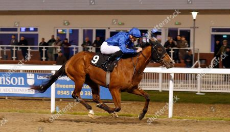 STORY OF LIGHT (James Doyle) wins The Bet toteplacepot At totesport.com Novice Stakes Chelmsford