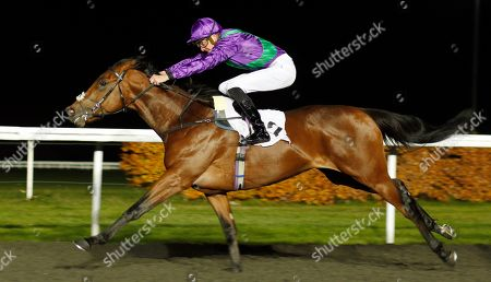 EASTERN SHERIFF (James Doyle) wins The 100% Profit Boost At 32redsport.com Novice Median Auction Stakes Kempton