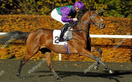 EASTERN SHERIFF (James Doyle) winner of The 100% Profit Boost At 32redsport.com Novice Median Auction Stakes Kempton