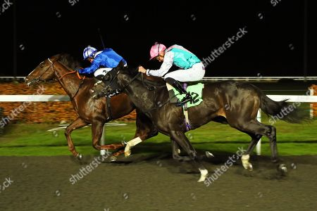 Stock Photo of SET PIECE (near) ridden by James Doyle catches Khuzaam in The British Stallion Studs EBF Hyde Stakes (Listed) at Kempton Park Copyright: Ian Headington/racingfotos.com