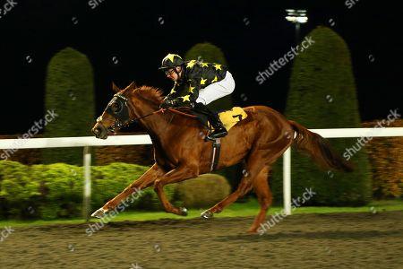 Editorial image of Horse Racing - 20 Nov 2019