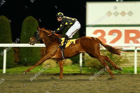Editorial photo of Horse Racing - 20 Nov 2019