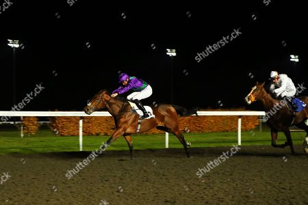EASTERN SHERIFF ridden by James Doyle 1st The 100% Profit Boost at 32redsport.com Novice Median Auction Stakes at Kempton Park Copyright: Ian Headington/racingfotos.com