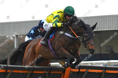 Winner of the The Smith and Williamson Bloodstock Tax & Advisory Services Handicap Hurdle Midnight Midge ridden by Bryan Carver and trained by Chris Down  during Horse Racing at Wincanton Racecourse on 21st November 2019
