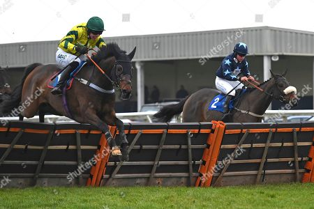 Winner of the The Smith and Williamson Bloodstock Tax & Advisory Services Handicap Hurdle Midnight Midge (green cap) ridden by Bryan Carver and trained by Chris Down  during Horse Racing at Wincanton Racecourse on 21st November 2019
