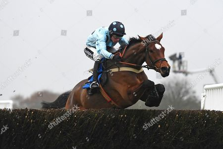 Winner of the Smith and Williamson Accountancy Steeplchase Baddesley Knight ridden by Tom Cannon and trained by Chris Gordon during Horse Racing at Wincanton Racecourse on 21st November 2019