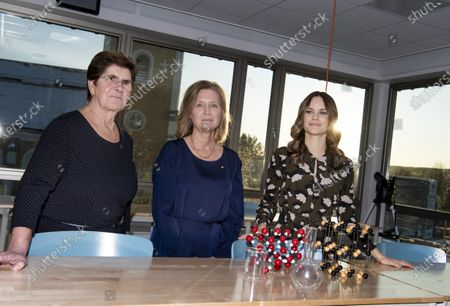 Princess Sofia of Sweden, governor Ylva Thorn and headmistress Marie Holm attend the inauguration of the Alvdalen new school