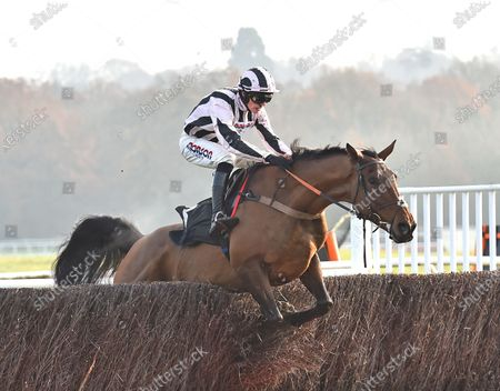 Danny Whizzbang (Harry Cobden) takes the last before going on to win The Ladbrokes John Francome Novices Steeple Chase.