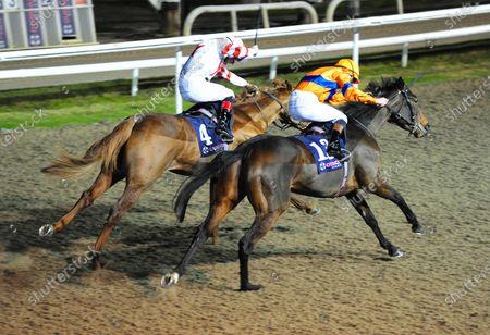 Editorial image of Horse Racing - 29 Nov 2019