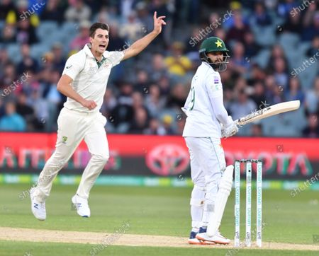Editorial image of Australia vs. Pakistan, Adelaide - 30 Nov 2019