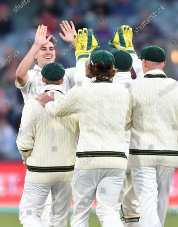 Stock Photo of Patrick Cummins (L, back) of Australia celebrates with teammates after the dismissal of Azhar Ali (not pictured) of Pakistan during day two of the second Test Match between Australia and Pakistan at Adelaide Oval in Adelaide, Australia, 30 November 2019.