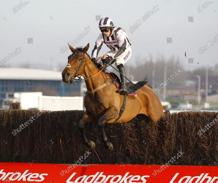 Danny Whizzbang and Harry Cobden win the Ladbrokes John Francome Novices' Chase at Newbury.