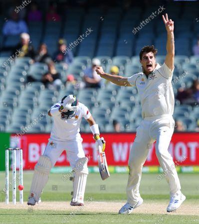 Editorial picture of Australia vs. Pakistan, Adelaide - 02 Dec 2019