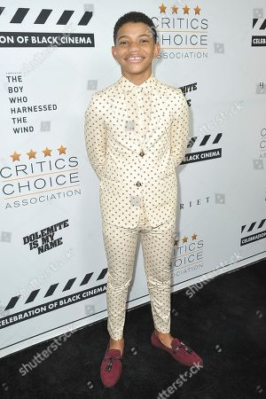 Lonnie Chavis attends the Celebration of Black Cinema at the Landmark Theatre, in Los Angeles