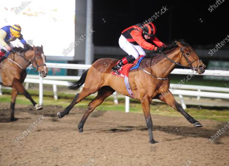 DUNDALK WILL BE KING and Dylan Browne McMonagle win for trainer Joseph O'Brien. Healy Racing