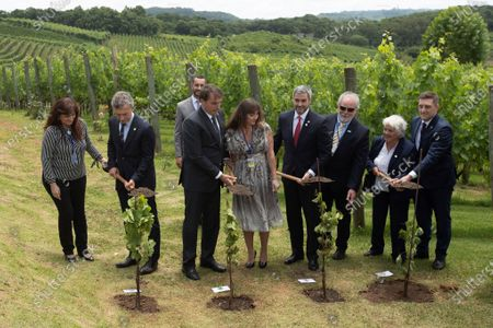 Argentine President Mauricio Macri (2-L), Brazilian President Jair Bolsonaro (3-L), Paraguayan President Mario Abdo (4-R) and Uruguayan Vice President Lucia Topolansky (2-R), plant trees at the beginning of the Mercosur summit at the Spa de Vinho Hotel in Bento Goncalves, Brazil, 05 December 2019. Bolsonaro opened the semi-annual summit of Mercosur and reaffirmed the liberal course adopted by the block, on which he warned that 'it cannot accept ideological setbacks'. The summit, in which Paraguay will receive from Brazil the temporary presidency of the block, is held in Bento Goncalvez, in the southern state of Rio Grande do Sul, and has been preceded by technical meetings and foreign ministers.
