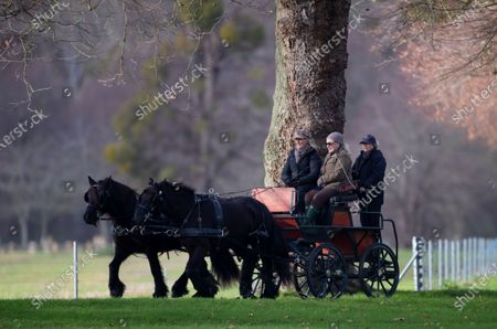 Editorial picture of Sophie Countess Of Wessex out Carriage Driving at Windsor Castle, UK - 07 Dec 2019