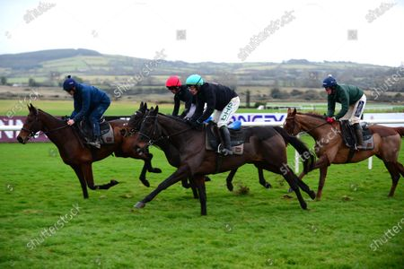 PUNCHESTOWN. 2019 Cheltenham Gold Cup winner AL BOUM PHOTO and Paul Townend, nearest camera, work after racing with KEMBOY (centre) and Patrick Mullins and CHACUN POUR SOI (Ruby Walsh) all for trainer Willie Mullins.