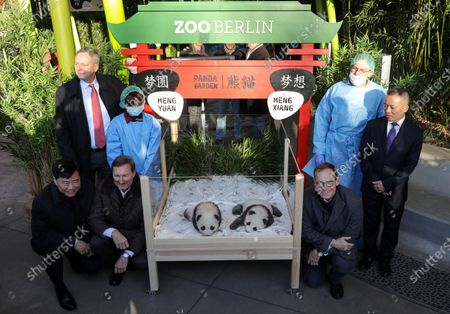 (L-R) China Ambassador to Germany Wu Ken, Berlin Zoo director Andreas Knieriem, Zoo Berlin supervisory board chair Frank Bruckmann (back), a zoo keeper, newly born panda cub Meng Yuan and Meng Xian, Berlin Governing Mayor Michael Mueller, a zoo keeper and Senior veterinarian and vice director of the Animal Disease Prevention and Control Department of Chengdu Research Base of Giant Panda Breeding Lan Jingchao pose at Zoo Berlin, in Berlin, Germany, 09 December 2019. Giant Panda Meng Meng gave birth to the two baby pandas on 31 August 2019, to father Jiao Qing.