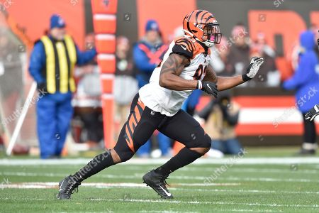 Stock Photo of Cincinnati Bengals defensive tackle Andrew Brown (93) runs during an NFL football game against the Cleveland Browns, in Cleveland. The Browns won 27-19