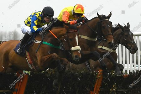 The Premier Celtic nearside ridden by Sean Houlihan and Ballyantics ridden by James Best jump the last first time around in  The Visit anthraces.com Handicap Hurdle during Horse Racing at Fontwell Park Racecourse on 10th December 2019
