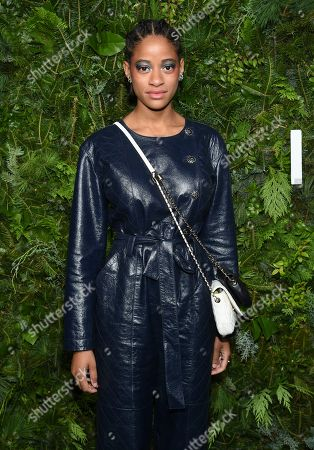 Stock Picture of Kimberly Robinson attends the Chanel Nº5 In The Snow launch event at The Standard, High Line, in New York
