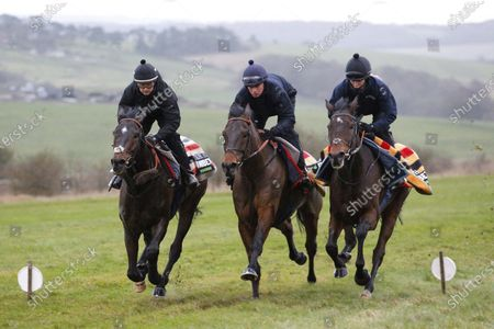 Altior and Nico De Boinville [left] with L'Ami Serge [James Bowen , centre] and William Henry [Hannah Ryan, right] on the Seven Barrows, Lambourn gallops for trainer Nicky Henderson.