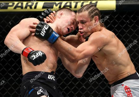 Petr Yan, left, fights Urijah Faber in a mixed martial arts bantamweight bout at UFC 245, in Las Vegas