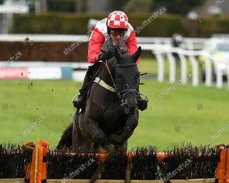 Winner of The Hairy Dog Brewery NovicesÕ Hurdle, Highway One o Two ridden by Tom Cannon and trained by Chris Gordon  during Horse Racing at Plumpton Racecourse on 16th December 2019