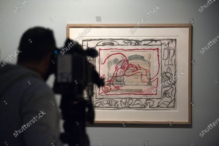 A cameraman recording images during the exhibition