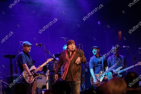 Steven Van Zandt with The Jellybricks