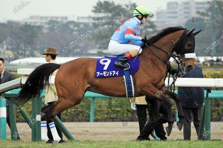 , Nakayama, Almond Eye with Christophe Lemaire at Nakayama racecourse, JPN.