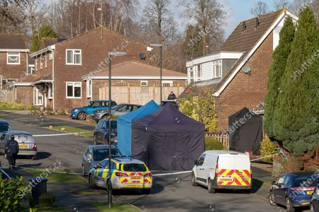 A Pensioner died after being allegedly struck with her own walking stick after she bravely tried to save a woman from a fatal attack in a quiet village. The body of Sandra Seagrave, 76, was found alongside that of the 32-year-old second victim after the horrific assaults in broad daylight outside the younger woman's home. Mrs Seagrave is believed to have come to the aid of the woman, thought to be a recently married local teacher, as she was being set upon by a shouting man. The 37-year-old man thought to be known to the younger woman was found with serious injuries, believed to be self-inflicted, inside the property in Crawley Down, West Sussex, on Sunday morning.