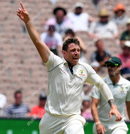 Australia's James Pattinson celebrates the wicket of New Zealand's Mitchell Santner during a cricket test match in Melbourne, Australia