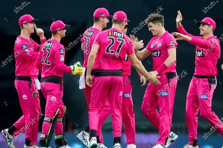 Stock Photo of Sydney Sixers player Sean Abbott celebrates a wicket with team mates
