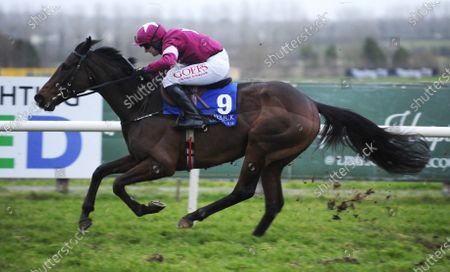 LIMERICK FIRE ATTACK and Tom Hamilton win The Meetings That Matter On Racing TC Flat Race. Healy Racing
