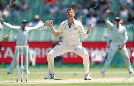 James Pattinson of Australia celebrates after dismissing Kane Williamson of New Zealand on day four of the Boxing Day Test match between Australia and New Zealand at the Melbourne Cricket Ground (MCG) in Melbourne, Australia, 29 December 2019.