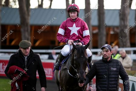 The O`Driscoll O`Neil Insurance Brokers Flat Race. Tom Hamilton on Eric Bloodaxe after the race