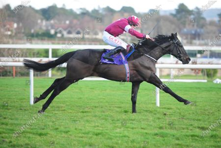 Stock Photo of LEOPARDSTOWN ERIC BLOODAXE and Tom Hamilton win for trainer Joseph O'Brien. Healy Racing