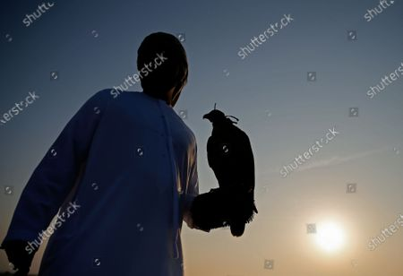 A man stands with his gyrfalcon during the Fazza Championship for Falconry in Dubai, United Arab Emirates (UAE), 30 December 2019. The Fazza Championship for Falconry is sponsored by Dubai's Crown Prince Sheikh Hamdan bin Mohammed bin Rashid Al Maktoum. Falconry, locally known as 'kanas' is an integral part of the heritage of the UAE. The falconry tournaments run until the end of March 2020.