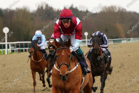 BENDY SPIRIT ridden by Connor Murtagh 1st The Ladbrokes Home Of The Odds Boost Handicap Stakes at Lingfield Park Copyright: Ian Headington/racingfotos.com