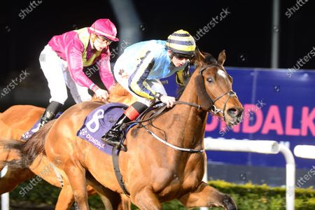 Stock Picture of DUNDALK. GUINEVERE and Conor Hoban win for trainer Ray Cody.