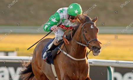 Stock Picture of JAMAICAN JILL (Martin Dwyer) wins The Betway Handicap Lingfield